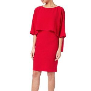 NWT Adrianna Papell Draped Blouson Sheath dress